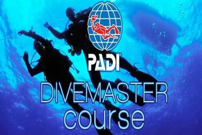 divemaster application